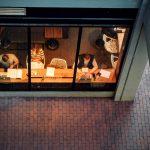 Jak niewielkie firmy finansują swoją działalność?